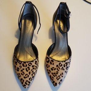 ShoesTahari leopard kitten heel new